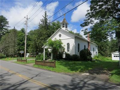 Sullivan County Commercial For Sale: 36 Forestburgh Road
