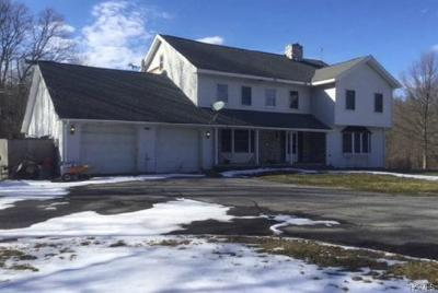 Single Family Home For Sale: 33 Ridgeview Lane