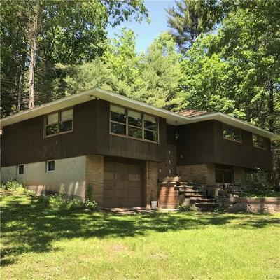 Single Family Home For Sale: 59 Upper Pine Kill Road