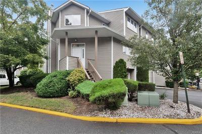 Rockland County Condo/Townhouse For Sale: 98 Village Green