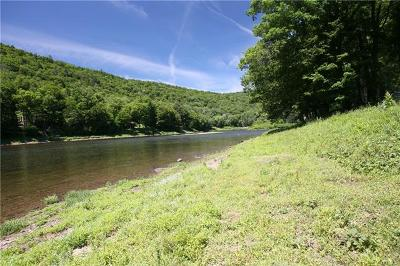 Callicoon, Callicoon Center Residential Lots & Land For Sale: River Road