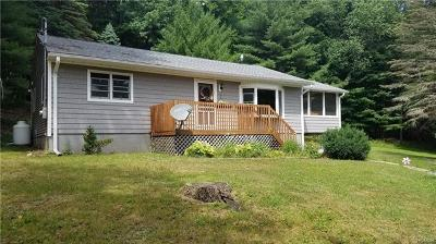 Napanoch Single Family Home For Sale: 240 Sholam Road