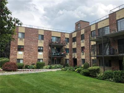 Yonkers Condo/Townhouse For Sale: 117 Dehaven Drive #242
