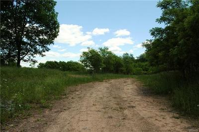 Bethel Residential Lots & Land For Sale: Horseshoe Lake Rd Co Hwy 141