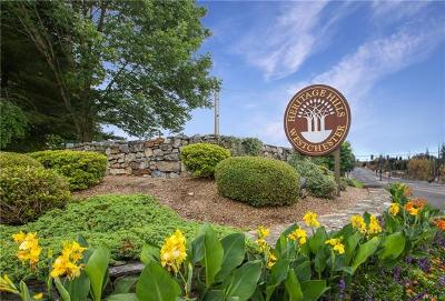 Somers Condo/Townhouse For Sale: 91 Heritage Hills #D