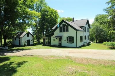 Livingston Manor, Roscoe Single Family Home For Sale: 110 Killian Road