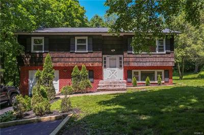 Single Family Home For Sale: 58 North Greenbush Road