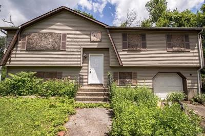 New Windsor Single Family Home For Sale: 546 Riley Road