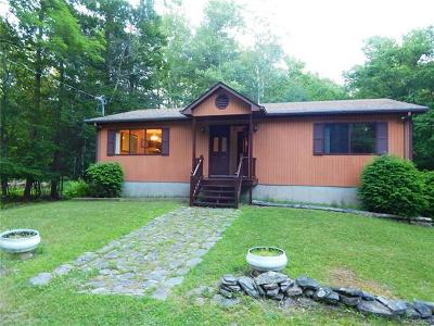 Single Family Home For Sale: 44 Taconic Trail