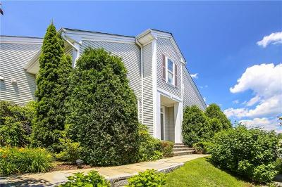 Rye Brook Single Family Home For Sale: 57 High Point Circle