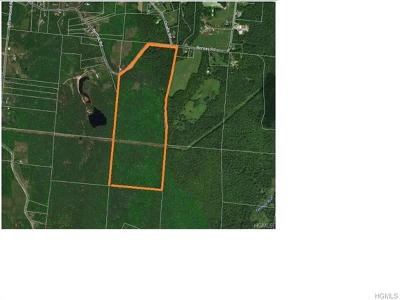 Cochecton NY Residential Lots & Land For Sale: $419,900