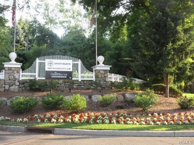 Condo/Townhouse For Sale: 1 Underhill Drive #11