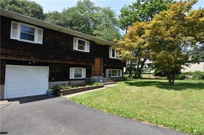 Single Family Home For Sale: 5 Freedman Avenue