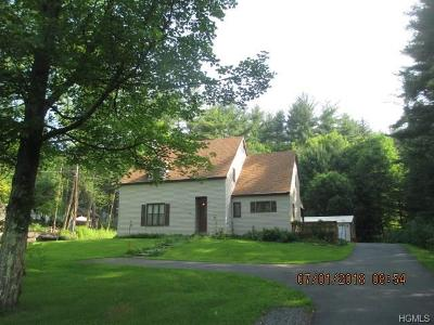 Single Family Home For Sale: 1070 State Route 52