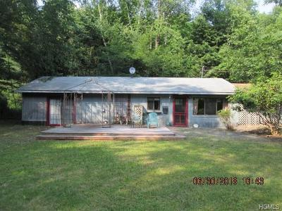 Delaware County Single Family Home For Sale: 125 Mountain Pass