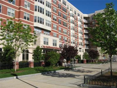White Plains Condo/Townhouse For Sale: 300 Mamaroneck Avenue #803