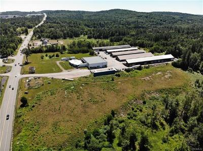 Sullivan County Commercial For Sale: ** State Route 17b