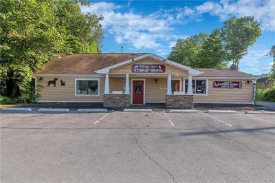 Monroe Commercial For Sale: 573 State Route 17m