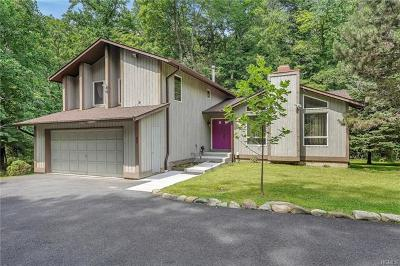 Single Family Home For Sale: 47 South Monsey Road
