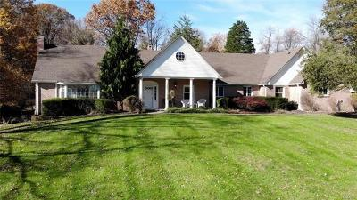 Orange County Single Family Home For Sale: 569 State Route 94 North