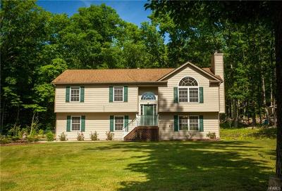 Westbrookville Single Family Home For Sale: 223 County Hwy 61