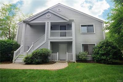 Westchester County Condo/Townhouse For Sale: 42 Offshore Drive