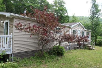 Roscoe NY Single Family Home Sold: $107,000