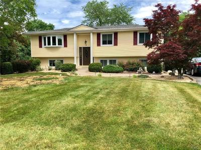 Goshen Single Family Home For Sale: 6 Greenwood Drive
