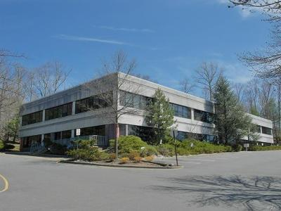 Rockland County Commercial For Sale: 26 Firemens Memorial Drive #113