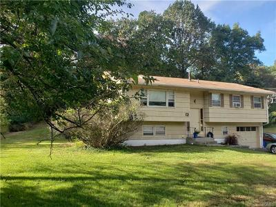 Stony Point Single Family Home For Sale: 13 Adams Drive
