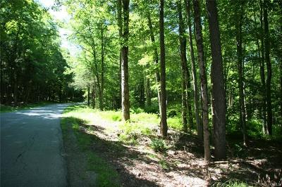 Cochecton Residential Lots & Land For Sale: Mitchell Pond East