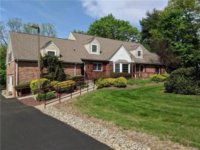 Rockland County Commercial For Sale: 18 Laurel Road
