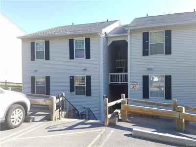 Harriman Condo/Townhouse For Sale: 24 Lexington Hill #10