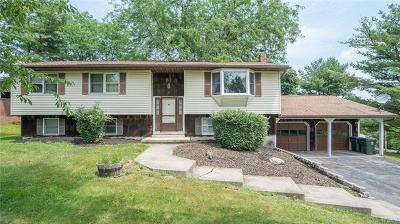 Walden Single Family Home For Sale: 95 Houtman Drive