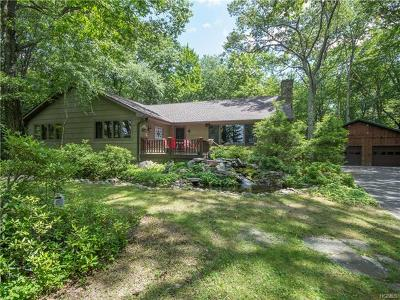 Wurtsboro Single Family Home For Sale: 261 Canal Road