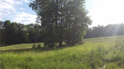 Bethel NY Residential Lots & Land For Sale: $79,900