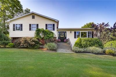 Rockland County Single Family Home For Sale: 5 Ossman Drive