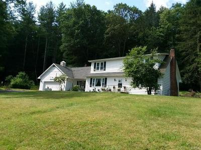 Narrowsburg Single Family Home For Sale: 176 Oak Street