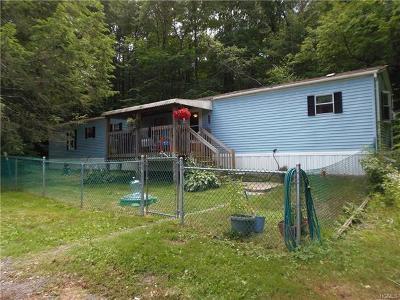 Middletown Single Family Home For Sale: 259 Goshen Turnpike