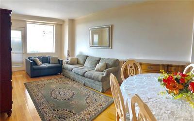 Bronx Rental For Rent: 5900 Arlington #9D