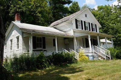 Wurtsboro Single Family Home For Sale: 333 Kingston Avenue