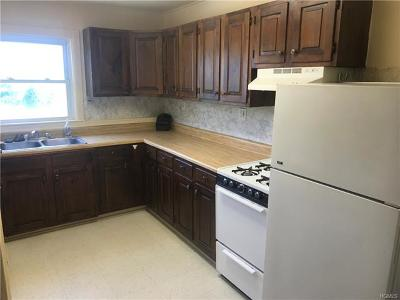 Orange County, Sullivan County, Ulster County Rental For Rent: 805 Nys Rte 52 #1