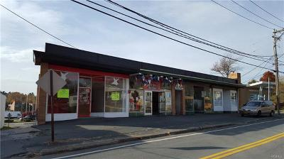 Sullivan County Commercial For Sale: 15 Liberty Street