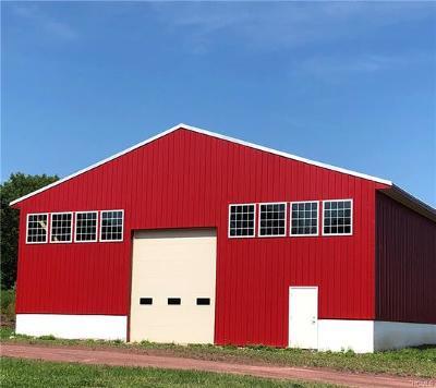 Sullivan County Commercial For Sale: 715 Glen Wild