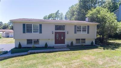 Newburgh Single Family Home For Sale: 13 Old South Plank Road