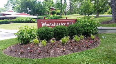 Westchester County Condo/Townhouse For Sale: 505 Old Country Road