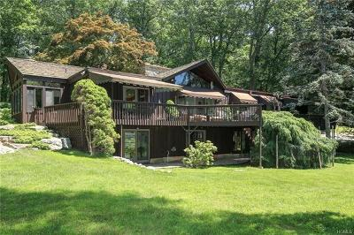 Westchester County Single Family Home For Sale: 27 Peters Lane