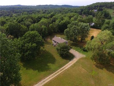 Rhinebeck Single Family Home For Sale: 9 Ferrara Drive