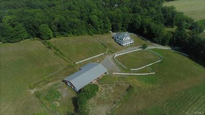 Orange County Single Family Home For Sale: 89 Camp Orange Road