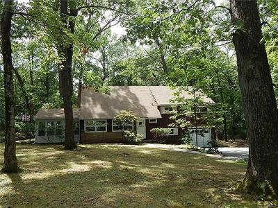 Newburgh Single Family Home For Sale: 19 Chestnut Lane